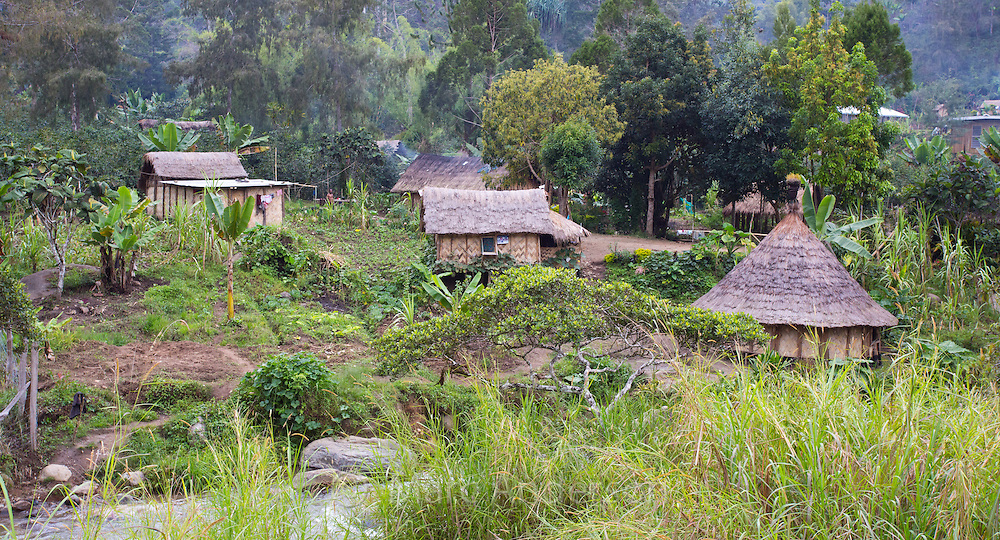 Traditional village homes by a river in the Papua New Guinea Highlands.