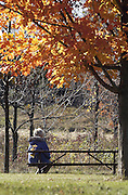 TAKING IN NATURE -- A retreatant takes in the fall colors at Lapham Peak State Park near Delafield during a women's walking retreat. (Photo by Sam Lucero)