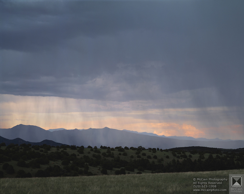 Rainshowers over Blue Range Mountains and Blue Range Primitive Area from near Highway 666, near Four Bar Mesa, Arizona...Media Usage:.Subject photograph(s) are copyrighted Edward McCain. All rights are reserved except those specifically granted by McCain Photography in writing...McCain Photography.211 S 4th Avenue.Tucson, AZ 85701-2103.(520) 623-1998.mobile: (520) 990-0999.fax: (520) 623-1190.http://www.mccainphoto.com.edward@mccainphoto.com.