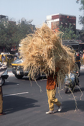 Person carrying large amount of straw balanced on their head along a Delhi street,