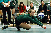 2015 Illinois Wesleyan Titans Women's Volleyball photos