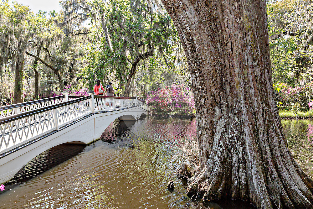 Long White Bridge over the Big Cypress Lake at Magnolia Plantation April 10, 2014 in Charleston, SC.