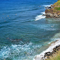 Surfers in Honolua Bay near Kapalua on Maui, Hawaii<br />