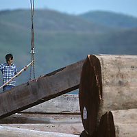 China, Hong Kong, Man directs crane lifting massive logs at lumber mill in New Territories