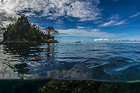 Raja Ampat, Triton Bay and FakFak in Indonesia (Dec. 2013). West Papua. Marine Life.