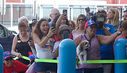 Families of Caribbean hurricane evacuees who arrived on board the Royal Caribbean Adventure of the Seas, rush to greet their relatives, Tuesday, Oct. 3, 2017, at Port Everglades in Fort Lauderdale. More than 3,000 people from Puerto Rico and the U.S. Virgin Islands were brought to Florida on board the cruise ship. Photo by Joe Cavaretta/Sun Sentinel/TNS/ABACAPRESS.COM