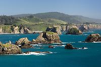Mendocino Coast California