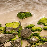 Trilha para a Praia do Gravata, Florianopolis, Santa Catarina - foto de Ze Paiva - Vista Imagens