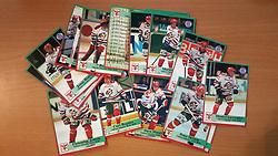 Odense Ishockey Klub<br /> <br /> Officielle Danske Hockey Trading Card. <br /> <br /> 1998-1999 Komplet Danske Ishockey Kort 228 stk.<br /> <br /> 90. Johan Allringer<br /> 91. Casper Nilsson<br /> 92. Søren Tranholm<br /> 93. Damon Moore<br /> 94. René Madsen<br /> 95. Jens Helsten<br /> 96. Lars Oxholm<br /> 97. Morten Råsten<br /> 98. Randy Murphy<br /> 99. Henrik Oxholm<br /> 100. Jonas Hansson<br /> 101. René Jensen<br /> 102. Per Apollo<br /> 103. Flemming Jensen<br /> 104. Markku Kyllönen<br /> 105. Peter Skræm<br /> 106. Dimitri Laurentiev<br /> 107. Ntsika Shange<br /> 108. Curt Regnier<br /> 109. Dave Moore<br /> 110. Rasmus Holst<br /> 111. Hasse Hansson<br /> 112. Bull Dog<br /> <br /> Begrænset komplet sæt på lager. Kontakt: mail@nhcfoto.dk eller tlf. 40277826