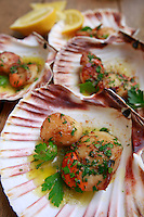 David Tanis-pan fried scallops with garlic and parsley<br /> January 21, 2014<br /> <br /> Photograph by Owen Franken for the NY Times