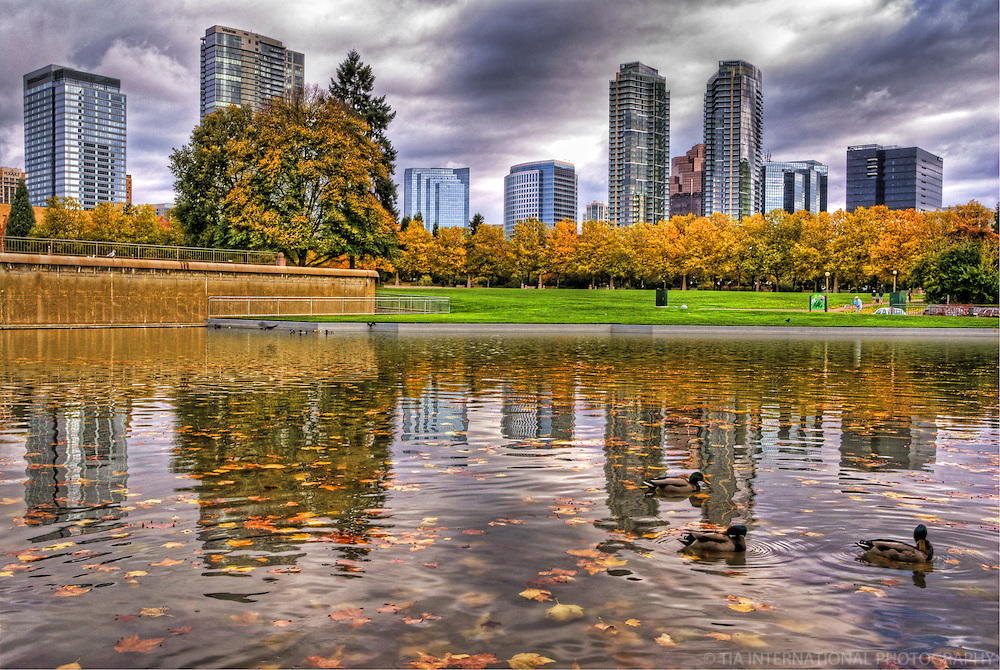 Bellevue Downtown Park, Overcast