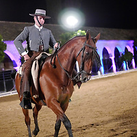 Alberto Carrera, Nocturn exhibition of Horse riding, Royal Stables, Cordoba, Andalusia, Spain, Europe<br />