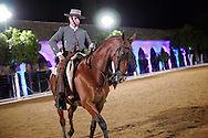 Alberto Carrera, Nocturn exhibition of Horse riding, Royal Stables, Cordoba, Andalusia, Spain, Europe<br /> <br /> EDITORIAL USE ONLY