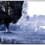 Rustic barn with fence and trees in cyanotype