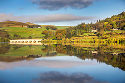 © Licensed to London News Pictures. 17/10/2019. Derwent Valley UK. The tree's & hill's around Ladybower Reservoir reflect it to the still water this morning in the Upper Derwent Valley, Derbyshire.Photo credit: Andrew McCaren/LNP