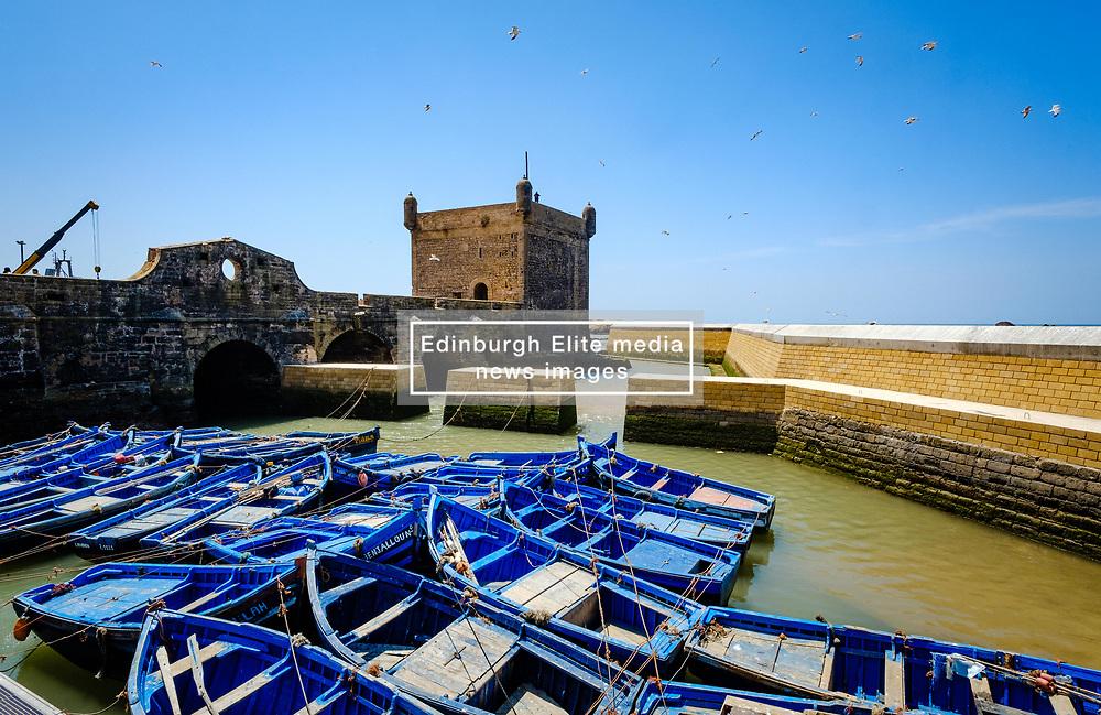 The harbour, Essaouira, Morocco<br /> <br /> (c) Andrew Wilson   Edinburgh Elite media
