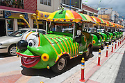 Green caterpillar tour tram, Cotacachi, Ecuador, South America. Cotacachi, the center of Ecuador's leather industry, is known for its polished calf skins and other leather products. The culturally vibrant valley around Otavalo attracts many tourists to the Imbabura Province of Ecuador.