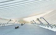 Li&egrave;ge Guillemins train station. This is the level above the tracks with access to the different platforms by escalator and stairs<br />