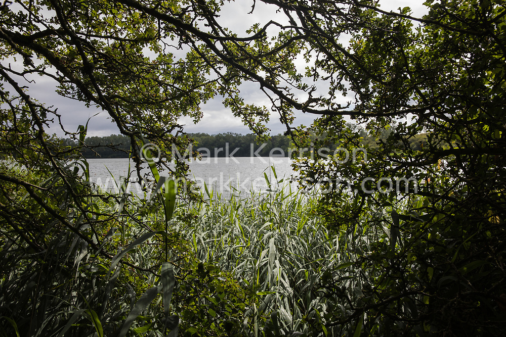 Calvert, UK. 27 July, 2020. A view through trees of the lake at Calvert Jubilee Nature Reserve. On 22nd July, the Berks, Bucks and Oxon Wildlife Trust (BBOWT) reported that it had been informed of HS2's intention to take possession of part of Calvert Jubilee nature reserve, which is home to bittern, breeding tern and some of the UK's rarest butterflies, on 28th July to undertake unspecified clearance works in connection with the high-speed rail link.