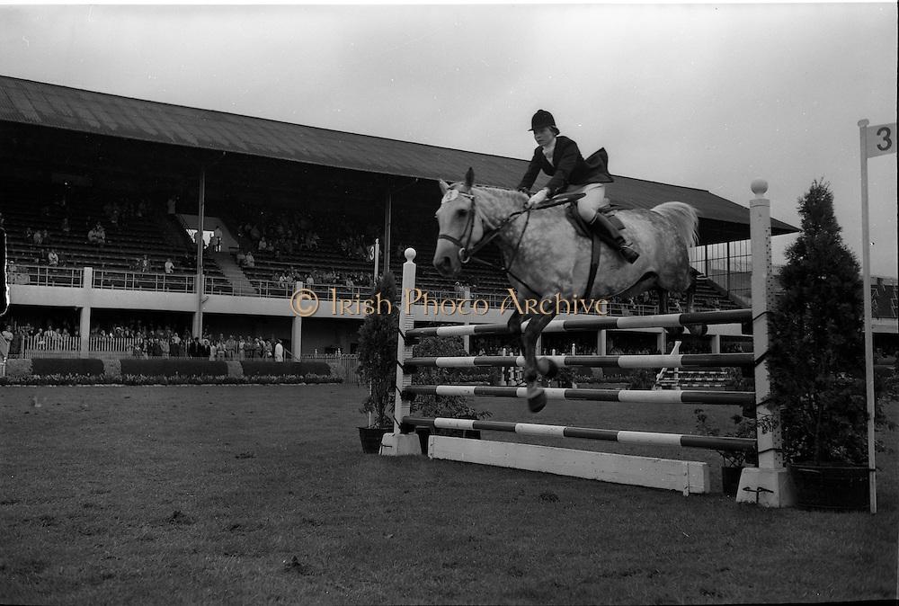 "09/08/1962<br /> 08/09/1962<br /> 09 August 1961<br /> RDS Horse Show, Ballsbridge Dublin, Thursday. <br /> Picture show ""Irish Lace"" ridden by Miss Virginia Freeman-Jackson, Cool-na-Grena, Mallow, Co. Cork."