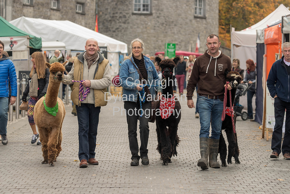 Repro free No Charge for Repro<br /> <br /> Francis Nesbitt, Crown Cottages Kilkenny, Suzanna Crampton, Zwartbles Ireland, Kilkenny and Paul MacDonnell, Hushabye Farm Alpacas Co.Laois pictured at the Savour Kilkenny Festival of Food.<br /> Picture Dylan Vaughan.