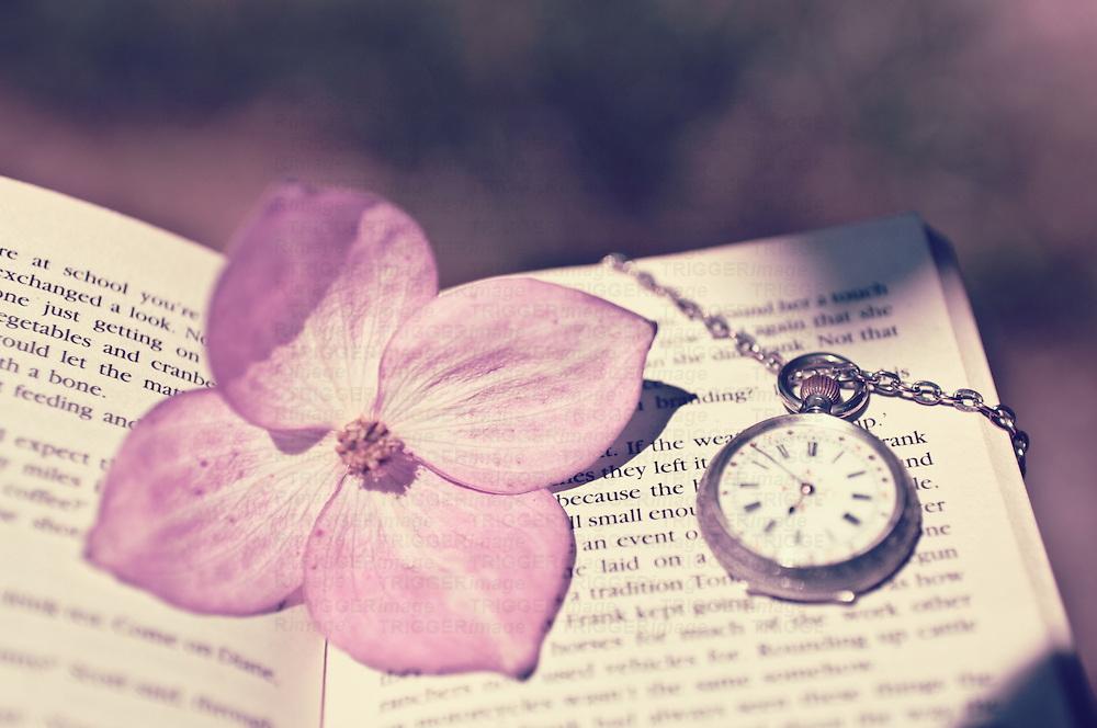 A book with a flower and pocket watch ontop on a summers day