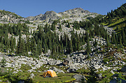 Tent in backcountry camp, in Marriott Basin near Wendy Thompson Hut, Coast Mountains British Columbia