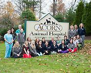 Acorn Animal Hospital