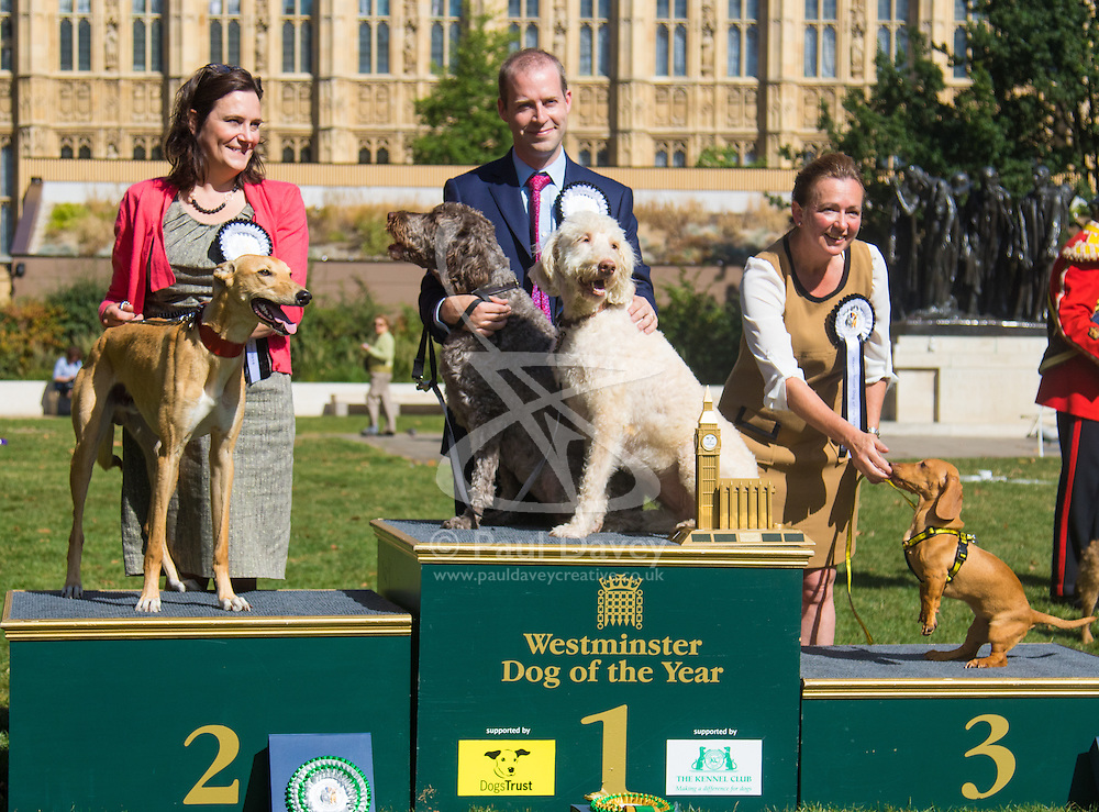 MPs and members of the House of Lords bring their pooches to Parliament as they compete to be crowned The Dogs' Trust and The Kennel Club's Westminster Dog Of The Year. PICTURED: On the podium, in third place, Liz Saville-Roberts MP (Dwyfor) and rescue daschund Fiona, in second, Rebecca Harris MP (Conservative) Castle Point, and her Lurcher Milo and winner Jonathan Reynolds MP (Labour) Stalybridge and Hyde with his two Labradoodles Clinton and Kennedy.