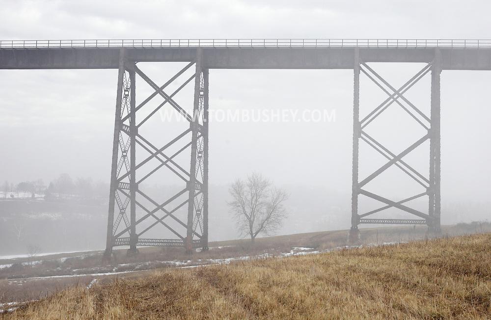 Salisbury Mills, New York - A tree in the fog under the Moodna Viaduct railroad trestle on a warm winter day on Jan. 2, 2010.