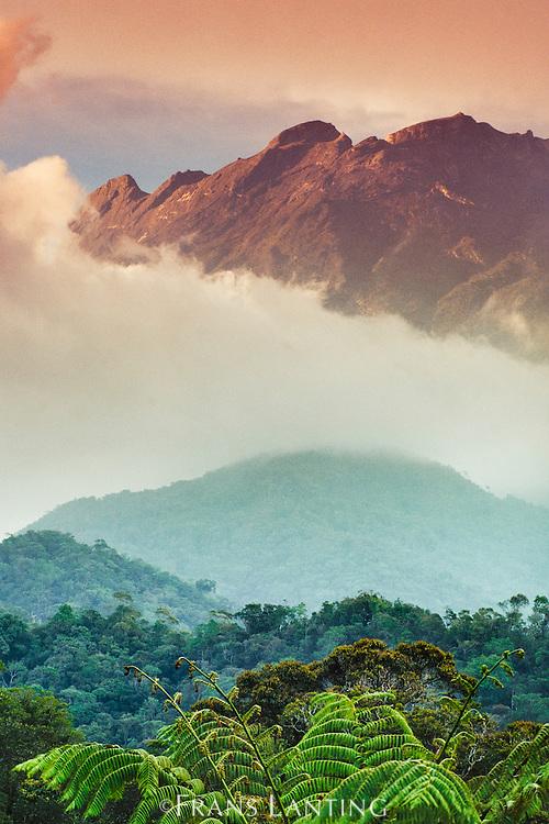 Mt Kinabalu, Mt Kinabalu National Park, Sabah, Borneo