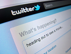 Detail of Twitter website homepage screenshot