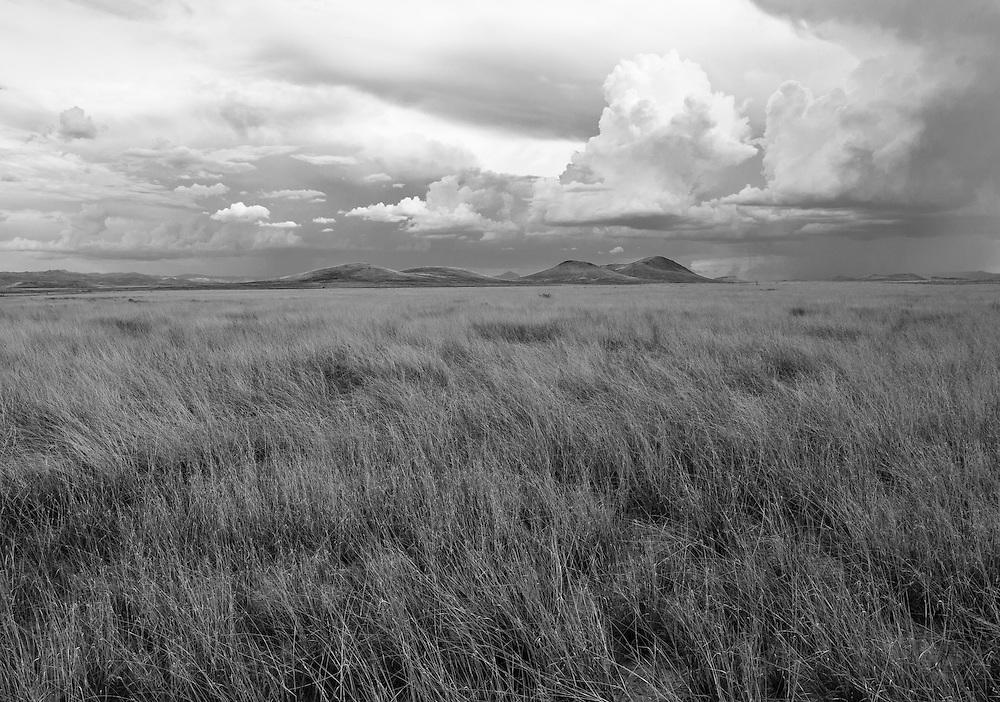 Malpais Grasslands,Arizona