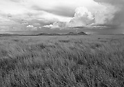 Malpais Grasslands,Arizona