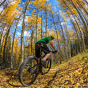 Jay Goodrich shoots a self portrait on the East Vail singletrack near Vail Colorado.