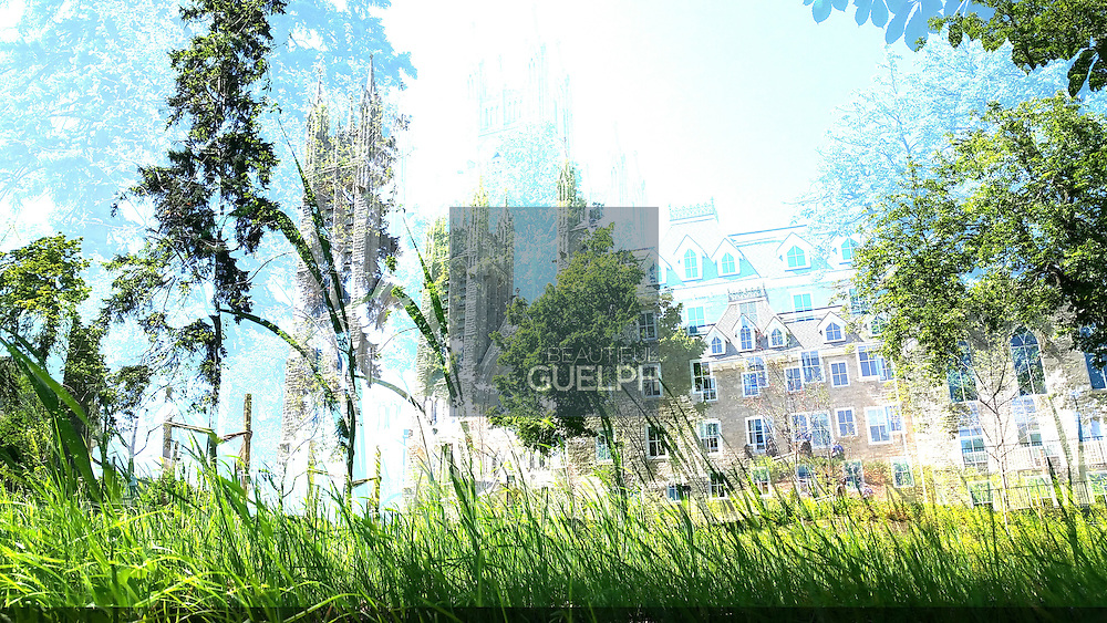 """Guelphonography 2015 Finalist.  """"Doubled Church"""" by Ted Mahy"""