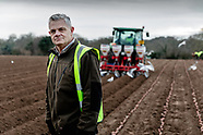 Meet the farmer Phil Rive Jersey Royal