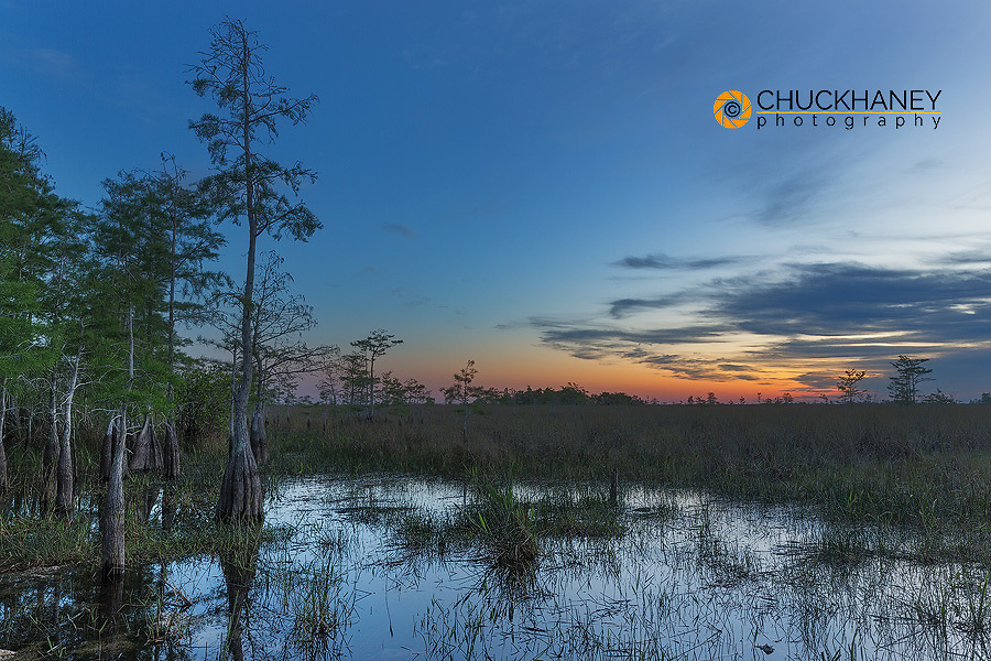 Sunrise over sawgrass wetlands in Everglades National Park, Florida, USA