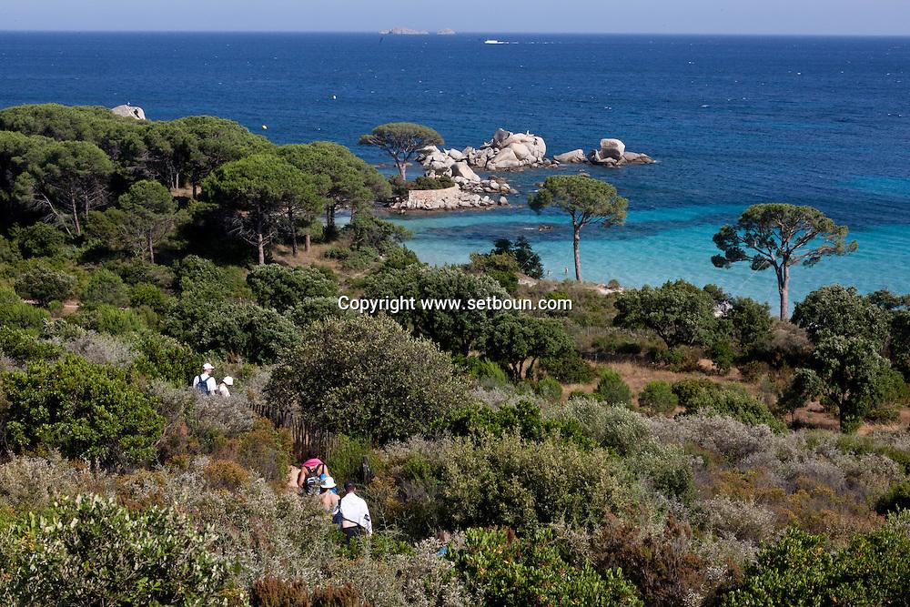 Corsica. France. Palombagio beach near porto vechio, Corsica south / la plage de Palombagio   pres de Porto vechio, Corse du sud