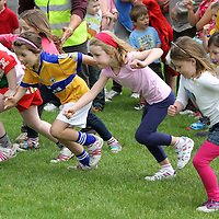 3/8/13 And there off. The Girls under 8's start their race at the Kilmaley Family Sports Day. Pic Tony Grehan