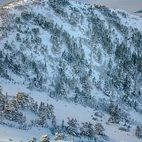 skiing on Mount Verstovia