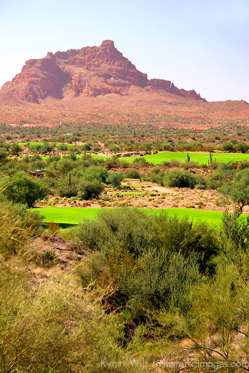 USA, Arizona, Fountain Hills. The golf course at We-Ko-Pa, part of the Radisson Fort McDowell Resort & Casino operated by the Yavapai Nation.