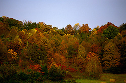 TN: Tennessee Great Smoky Mountains National Park, Mtns, Cades Cove, Fall color          .Photo Copyright: Lee Foster, lee@fostertravel.com, www.fostertravel.com, (510) 549-2202.Image: tnsmok218
