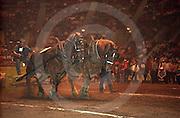Harrisburg, PA, Pennsylvania Farm Show, Horse Pulling Contest