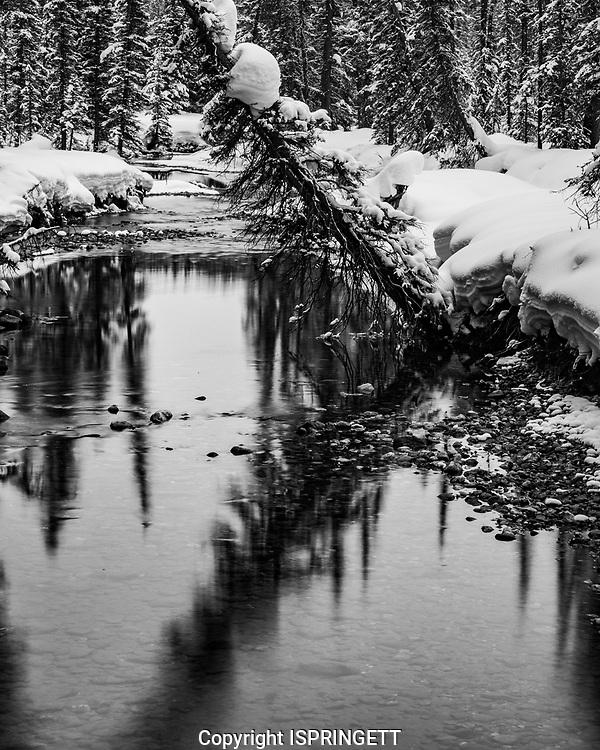 Bow River in winter, Alberta, Canada, Isobel Springett