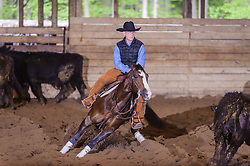 May 21, 2017 - Minshall Farm Cutting 4, held at Minshall Farms, Hillsburgh Ontario. The event was put on by the Ontario Cutting Horse Association. Riding in the Open Class is Brian Kelly on Scarlet Catdancer owned by Ronald Stelzl.