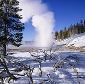 Winter - Yellowstone National Park
