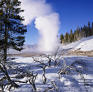 Winter - Yellowstone National Park