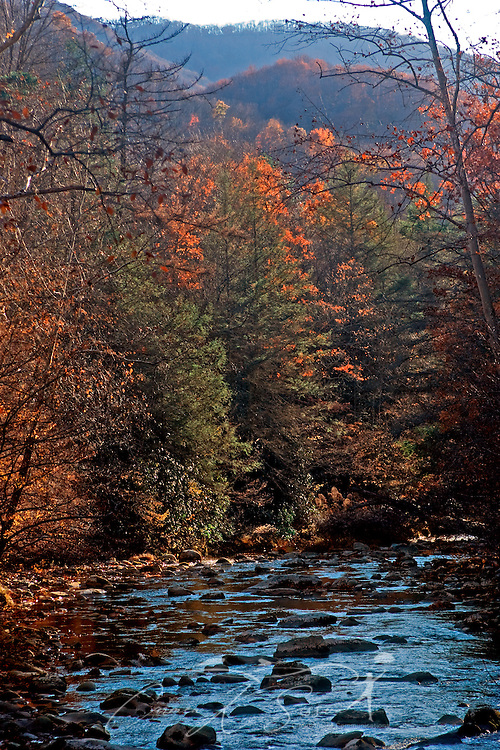 Leaves change color on Little River in the Great Smoky Mountains. (Photo by Carmen K. Sisson/Cloudybright)