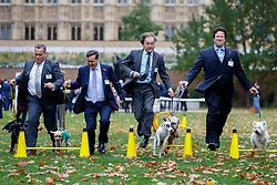 © Licensed to London News Pictures. 29/10/2015. London, UK. Conservative MPs David Warburton, Nigel Adams, Hugo Swire and Alec Shelbrooke taking part at Westminster Dog of the Year competition in Victoria Tower Gardens in London on Thursday, 29 October 2015. Photo credit: Tolga Akmen/LNP
